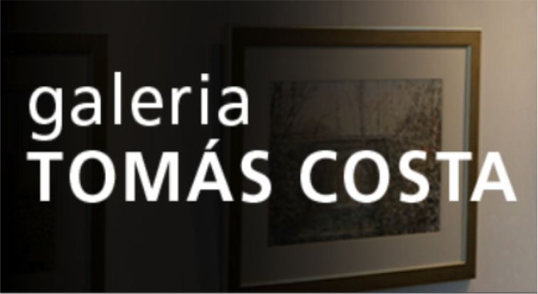 Galeria Tomás Costa
