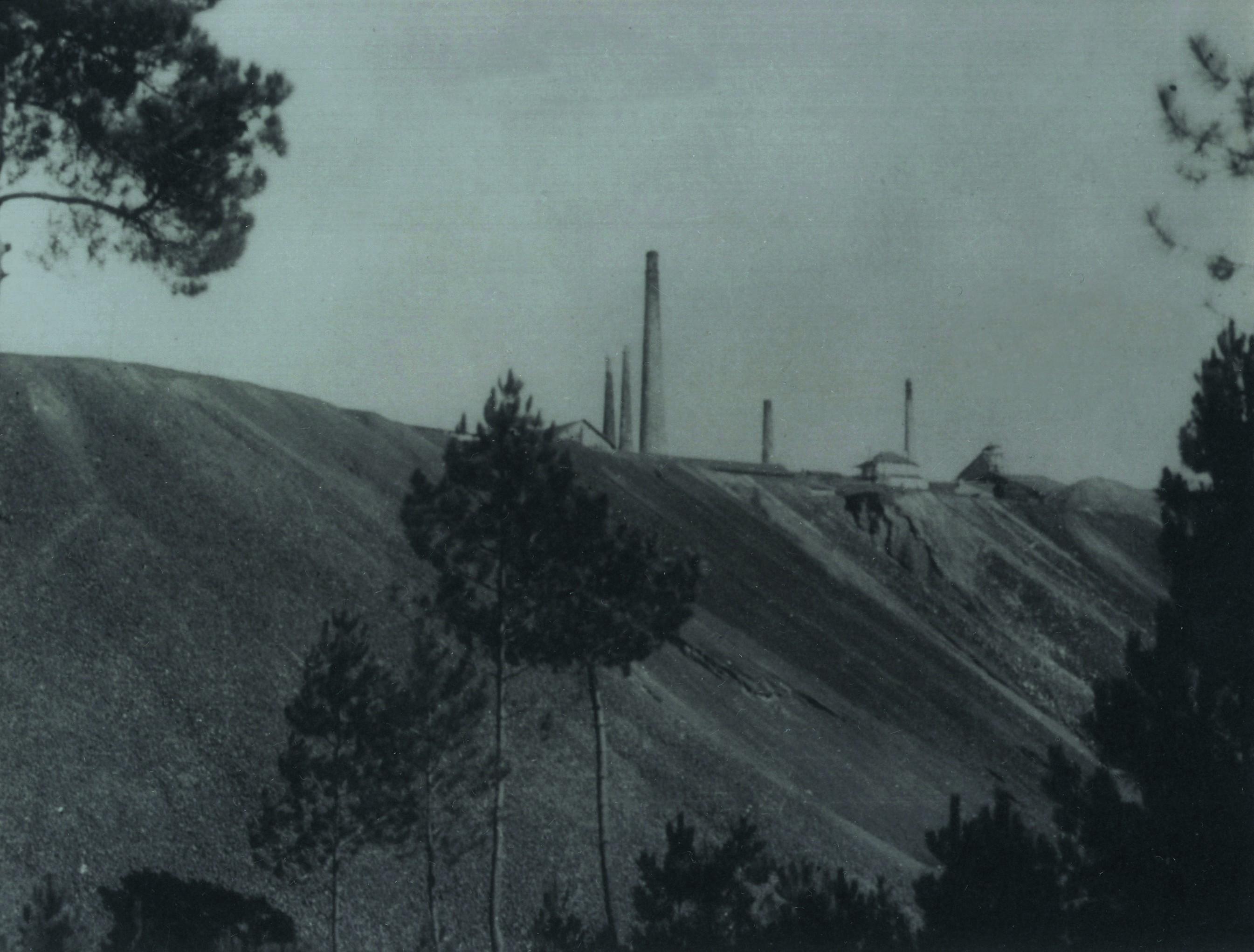 Minas do Pintor, Nogueira do Cravo (1920)