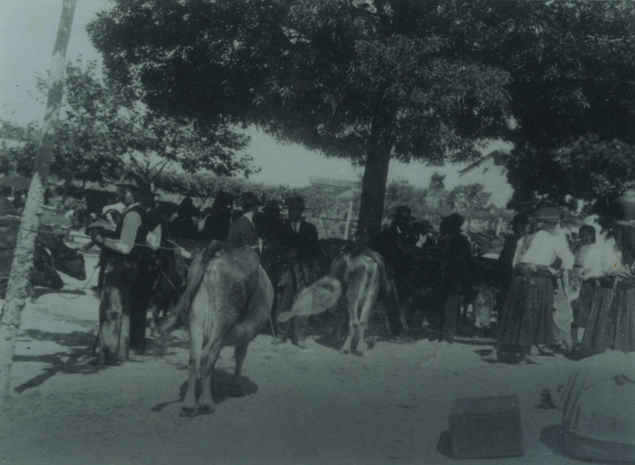 Feira dos 27, Nogueira do Cravo (1922)