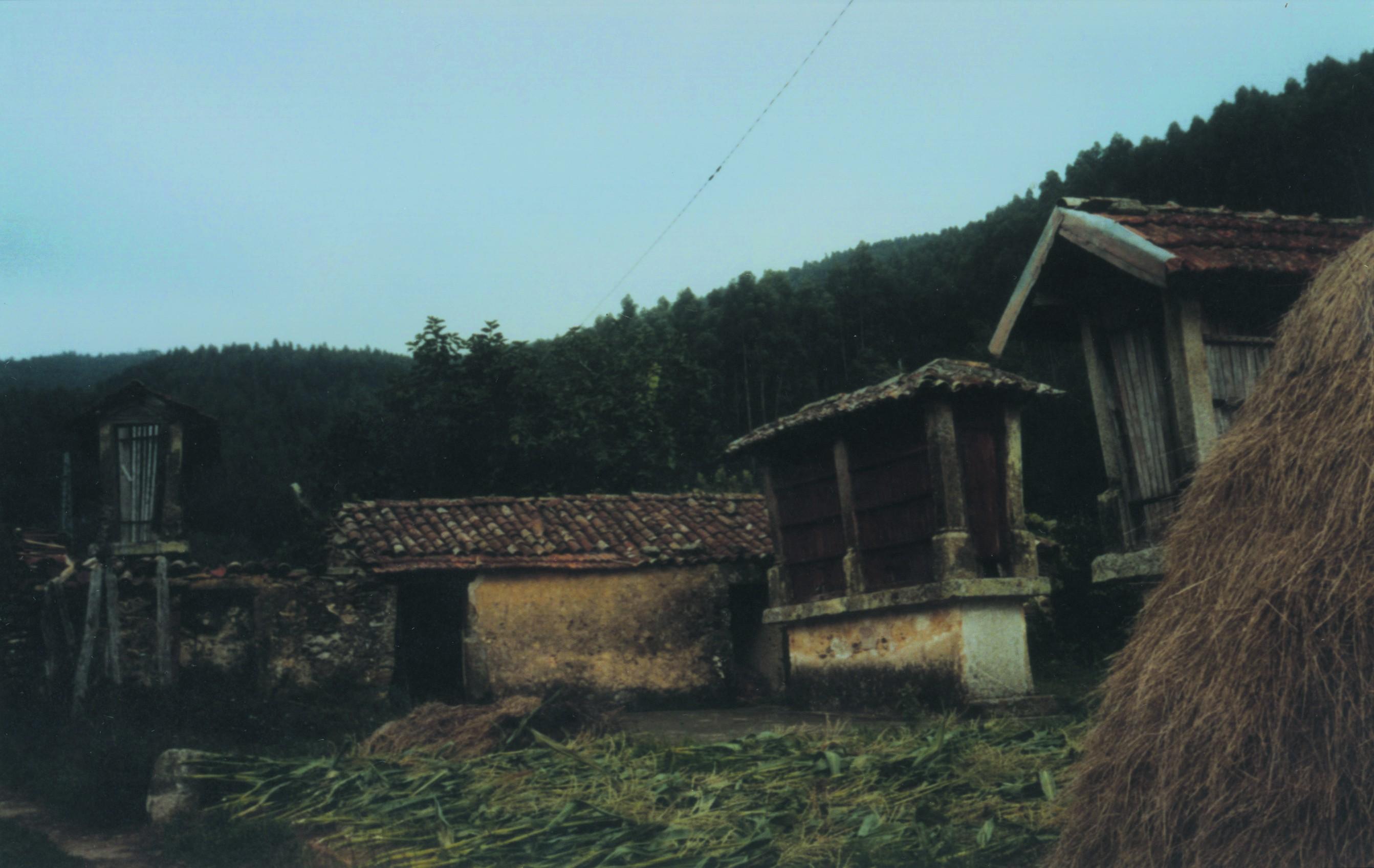 Espigueiros de Vilarinho de S. Luís, Palmaz (1999)