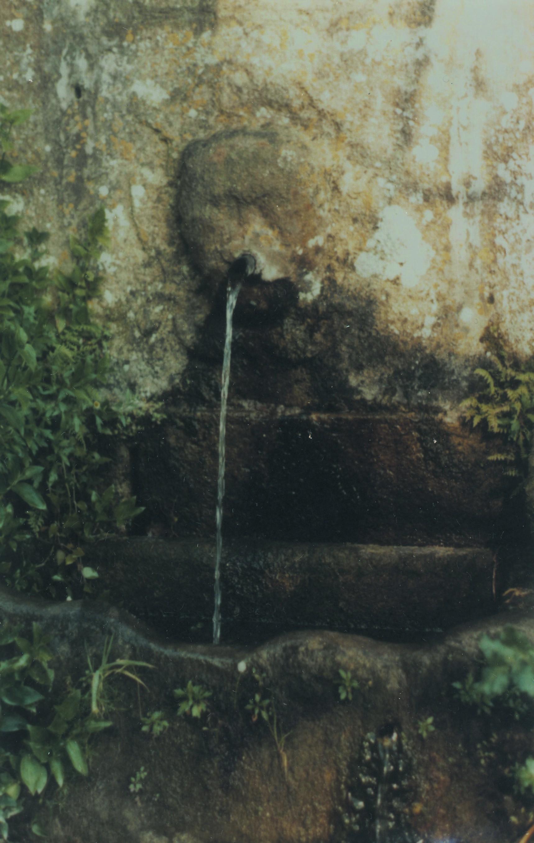 Fonte Chãs, Pinheiro da Bemposta (1985)