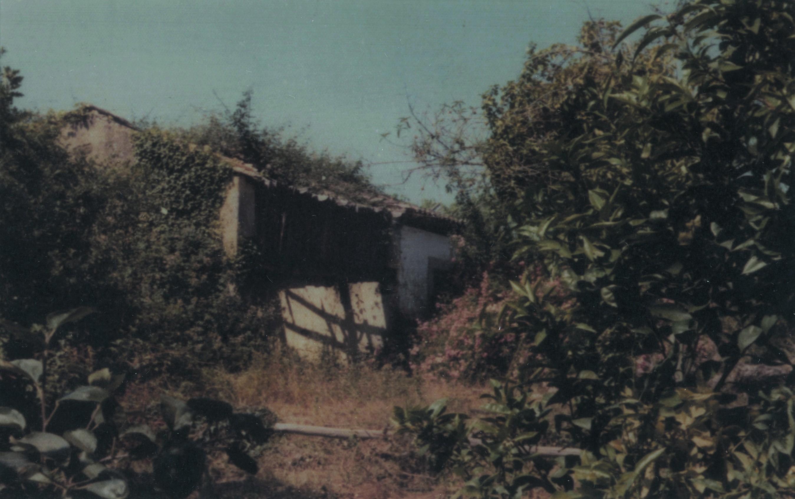 Casa natal do sr. António Luís Gomes (Pai), S. Martinho da Gândara (1972)