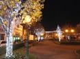 Iluminação de Natal no jardim público da cidade