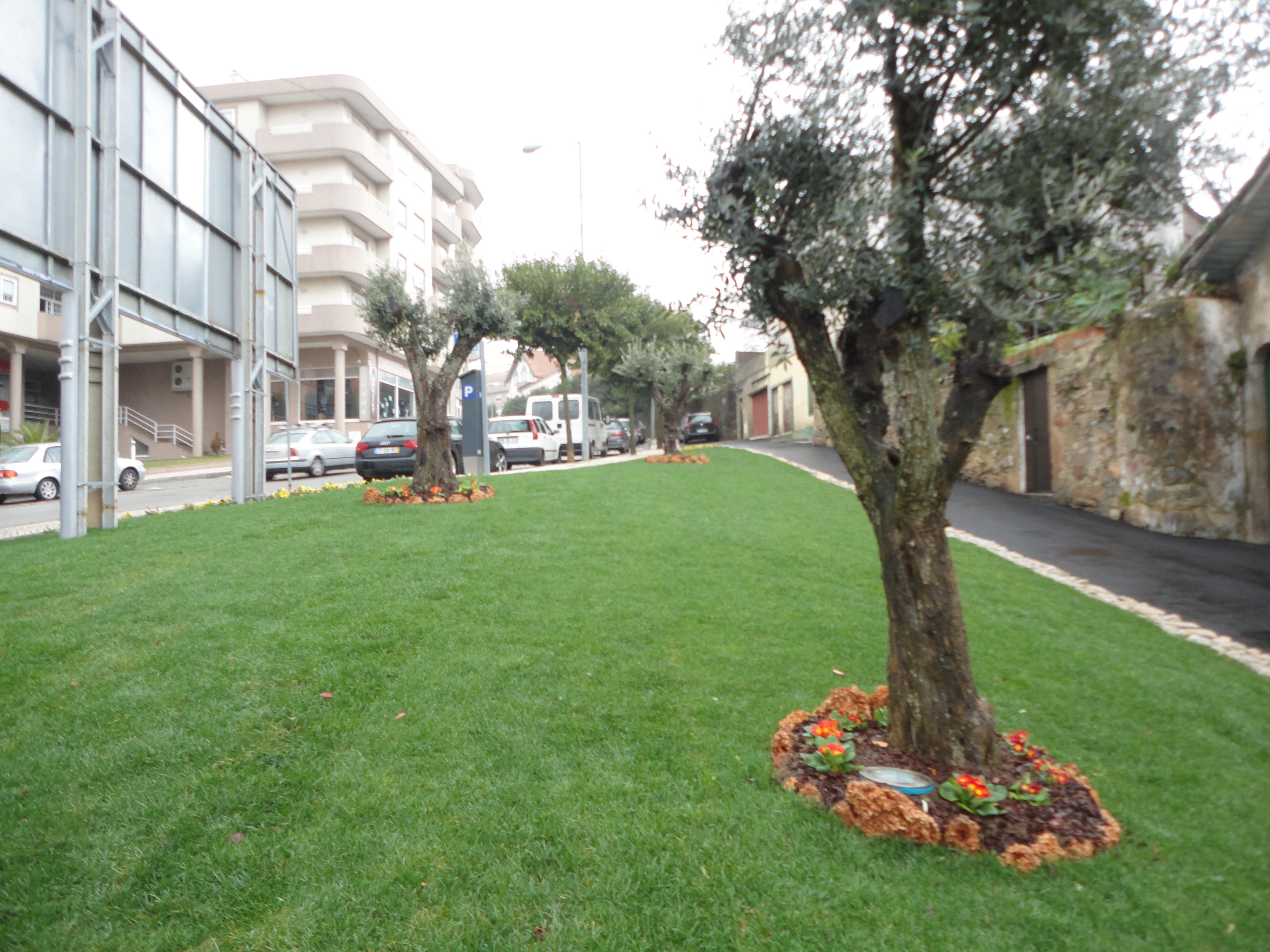 Jardim 5 de Janeiro, na rua D. Salvador Machado