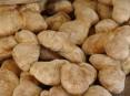 Pão de Ul está em processo de certificação como Indicação Geográfica Protegida (IGP)