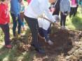 Plantação da 1ª árvore